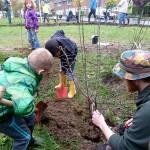 Plantation des arbres fruitiers au rucher Messidor