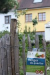 Entretien des espaces verts du quartier :  Coups de mains bienvenus!